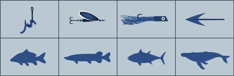 Spécialisation des méthodes de pêche